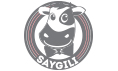 saygili