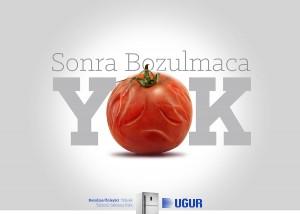 ugur-domates